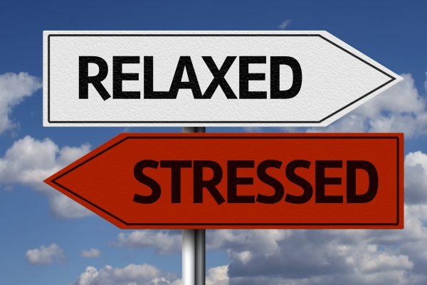 het kleine genoegen stress relaxed
