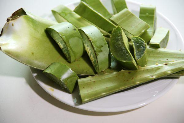 bladeren aloe vera het kleine genoegen